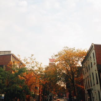 View from Locust St. - a block from the Sycamore House